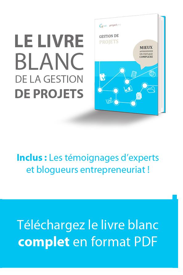 Livre Blanc De La Gestion De Projets